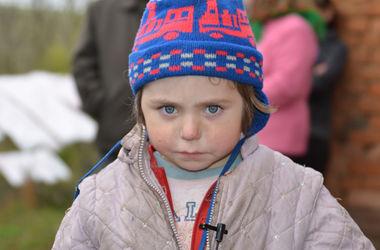 В Тернопольской области 5-летняя девочка провела ночь в лесу, пока ее искали 700 человек