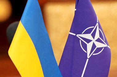 НАТО поможет реабилитировать бойцов АТО