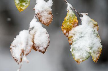 Украину ждут дожди, снег и гололед