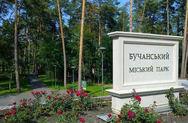 Под Киевом кандидат в нардепы пытался подкупить избирателей бесплатным обедом