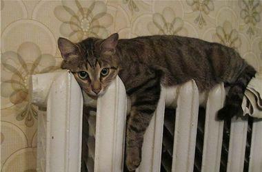 В Херсоне людям до сих пор не включили отопление
