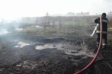 Под Киевом жители поселков пытаются затопить горящие торфяные поля