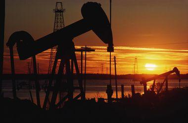 Цены на нефть рухнули до уровня 2010 года