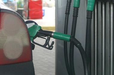 """Цены на бензин 19 ноября немного """"откатились"""""""