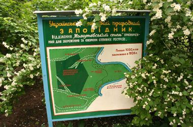"""Боевики """"ДНР"""" захватили заповедник под Мариуполем"""