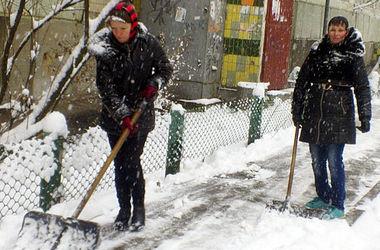 Вышли убирать снег в киеве
