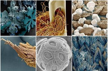 25 простых вещей, которые под микроскопом выглядят невероятно