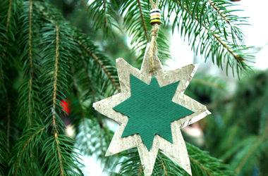 На Подоле устанавливают 16-метровую новогоднюю елку