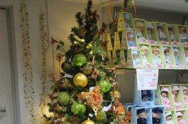 Как выбрать новогоднюю елку 2015