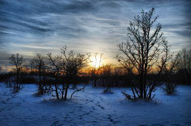 Убийство на Прикарпатье: родители застрелили троих малышей и покончили с собой