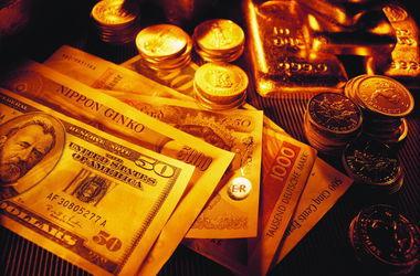 Уровень золотовалютных резервов НБУ достиг пятилетнего минимума - Гонтарева