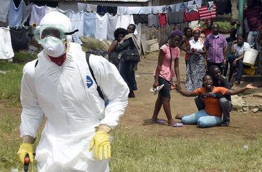 Ученые выяснили, с чего началась эпидемия Эболы