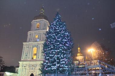 Главная елка Украины пойдет на сувениры
