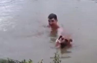Собака-спасатель растрогала пользователей Интернета