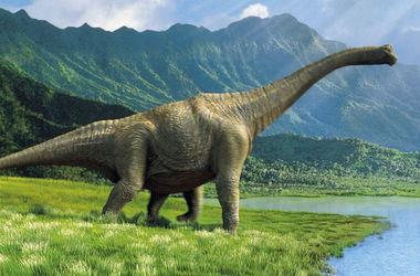 Обнаружены останки неизвестной рептилии, жившей до динозавров