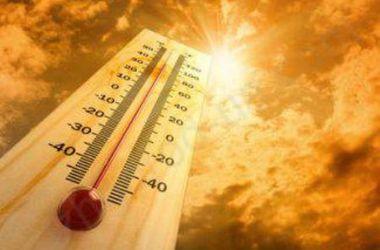 В ООН признали 2014 год самым жарким в истории