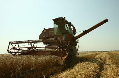 Украинскую экономику поднимут овощи и молоко