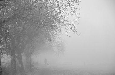 Весна придет в Украину с туманами и дождями