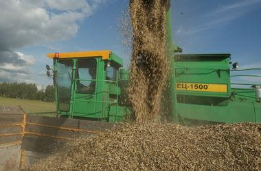 Днепропетровской области зерна хватит на год – чиновники