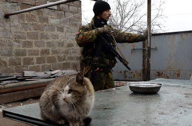 Боевики концентрируют новые формирования в Донецке - Тымчук