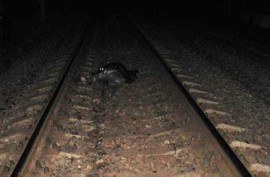 На Львовской железной дороге двое мужчин погибли под поездом