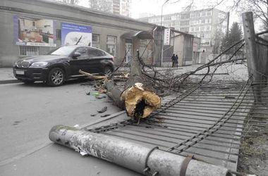 В Харькове ураган срывал балконы и бросал деревья на машины