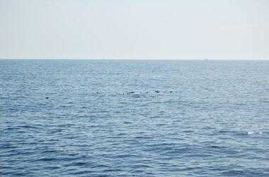 Американец чудом спасся, проведя 66 дней в открытом море