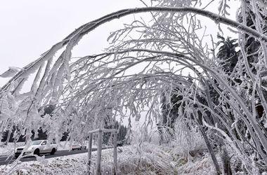 Украину засыпало апрельским снегом