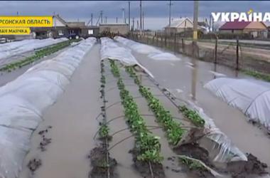 В Херсонской области настоящее природное бедствие