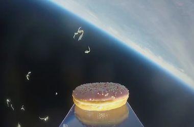 Ученые из Норвегии отправили в космос пончик