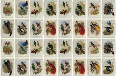 В ООН выпустили комплект марок с изображением райских птиц