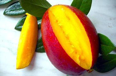 Рекордно низкий урожай манго в Индии скажется на мировых ценах