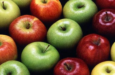 Украинские магазины заполонили польские яблоки
