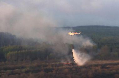 Пожарным удалось сократить количество очагов возгорания под Чернобылем, работу продолжают 30 пожарных расчетов
