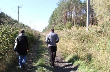 Под Киевом у трех частников отсудили лес стоимостью почти 22 млн грн
