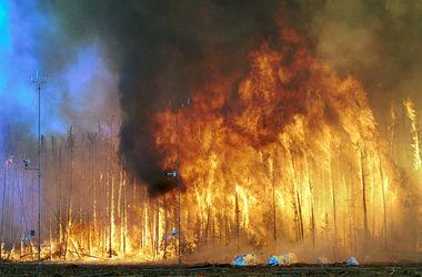 В Забайкалье площадь пожаров за несколько дней выросла в пять раз