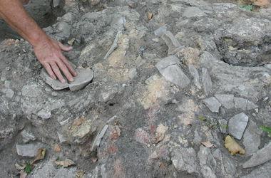 где нашли останки древнего человека