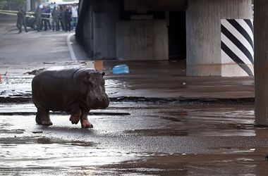 УЕФА не планирует переносить матч за Суперкубок из Тбилиси из-за наводнения