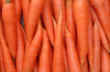 Советы садоводу: как создать морковный запас на зиму