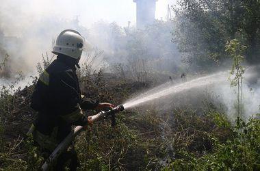Под Киевом пожарные спасли из огня собаку