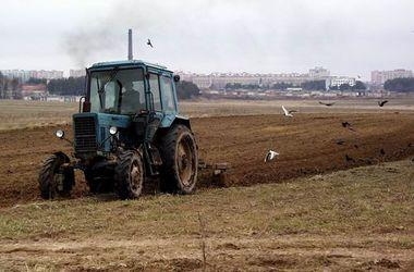 Во Львовской области трактор убил 5-летнего мальчика