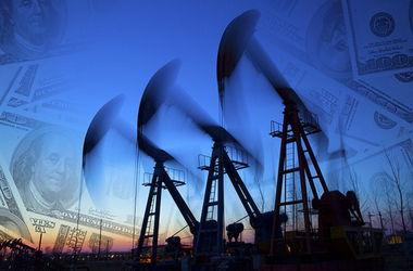 Цены на российскую нефть упали почти вдвое