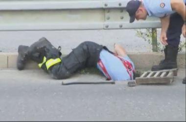 Полицейские спасли шестерых утят, провалившихся в ливневку