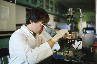 Ученые получили универсальное лекарство против рака