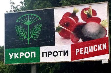 Все, что нужно знать о выборах в Чернигове