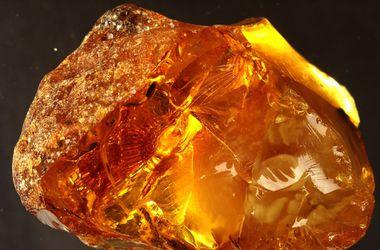 В Харькове гемолог требовал взятку за экспертизу янтаря