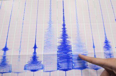 Мощное землетрясение раскачало Индию