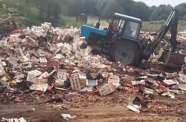 """В России показали, как уничтожают почти 40 тонн """"запрещенных"""" фруктов"""