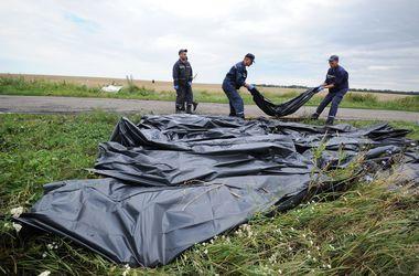 Нидерланды отказались рассекретить все документы по катастрофе Боинга-777