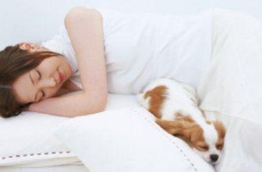 Как быстрее уснуть: простые советы